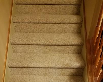 Home Scarvelli Floors